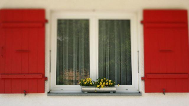 Prozor i cveće