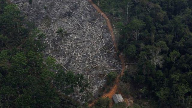 Amazon'un ormansızlaştırılmış bir arazisinin havadan görünümü.  Dosya fotoğrafı