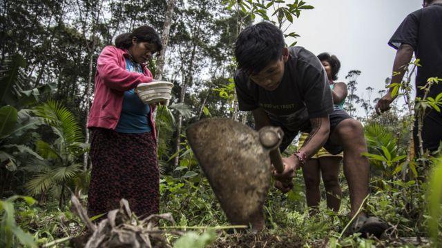 Indígenas manipulando a terra para plantação