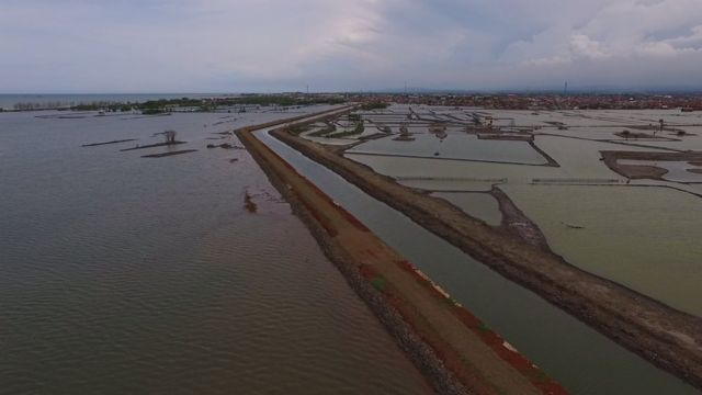 banjir, rob, pesisir Indonesia, tenggelam