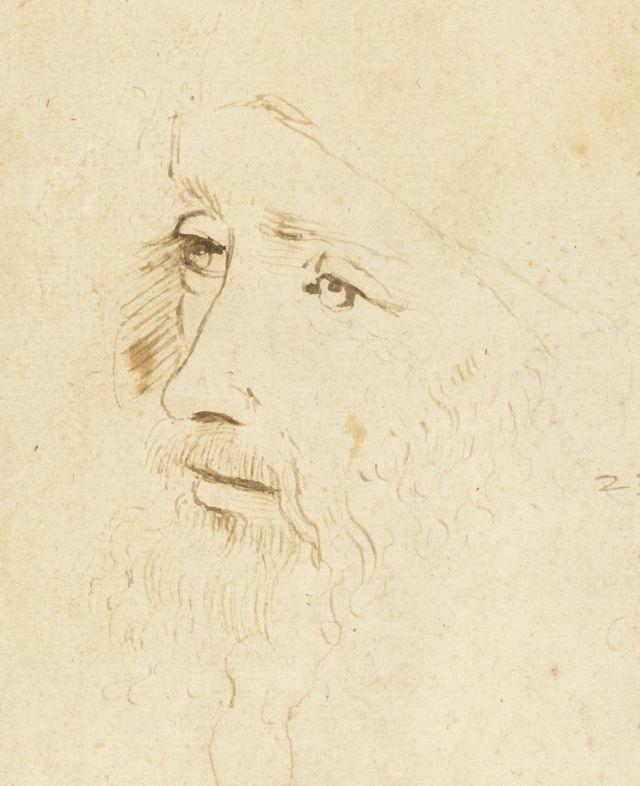 Leonardo Da Vinci skeci
