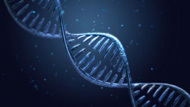 Gene editing is GM, says European Court