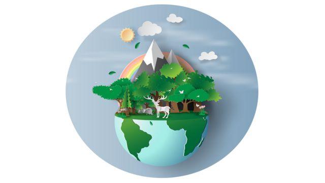 Podsticanje svetskog ekosistema pomoglo bi u borbi protiv klimatskih promena, kaže Elizabet