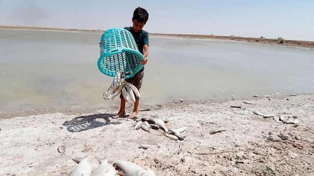 Pescador en Irak