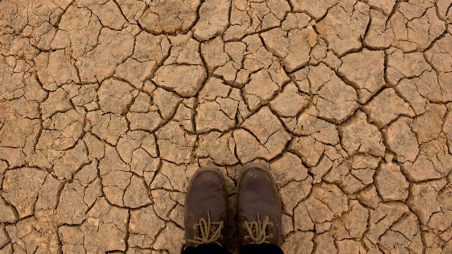 Pies posados sobre un suelo seco.