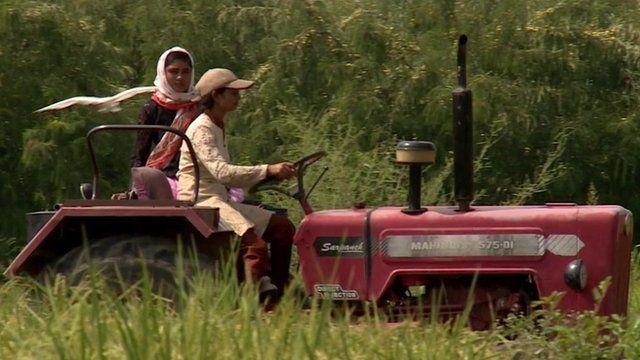 Rimppi Kumari and her sister Karamjit driving their tractor