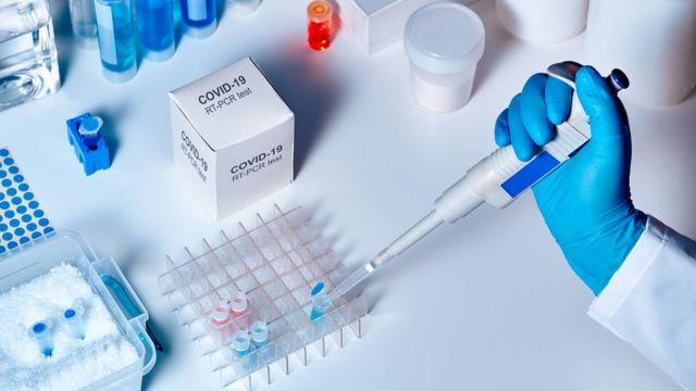 Los científicos descartaron totalmente que el Sars-CoV-2, el virus que causa el covid-19, hubiera sido creado en un laboratorio.