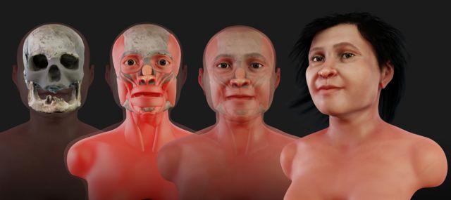 Ilustración de etapas de la reconstrucción forense del rostro de Eva de Naharon