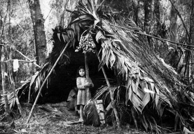 Criança Xokleng em acampamento na floresta, em 1963