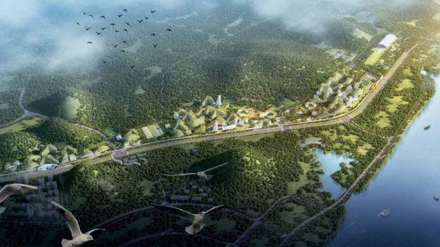 Çin orman kent