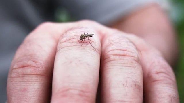 Kipimo hicho cha kutumia hewa ya mtu anapopumua kinaweza kugundua harufu sita tofauti ili kubaini visa vya malaria.