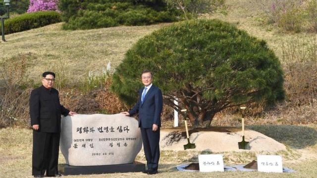 植樹をした金委員長(写真左)と文大統領(27日、板門店)