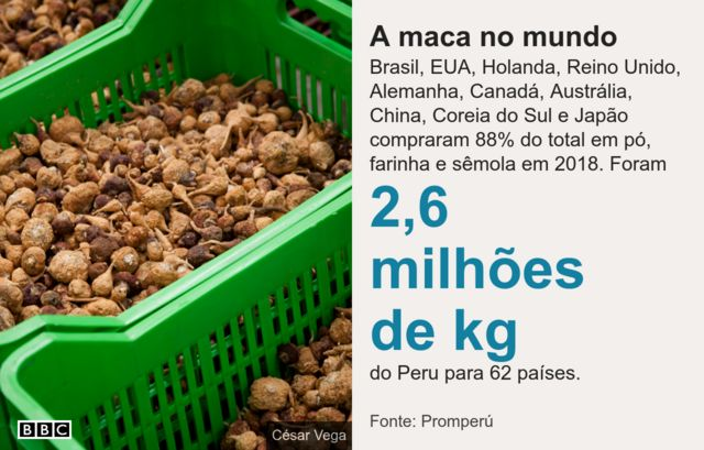 Imagem mostra as exportações de maca peruana no mundo