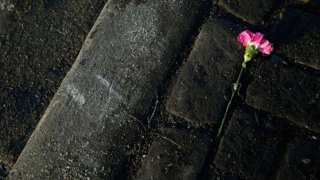 Cvet na mestu pogibije