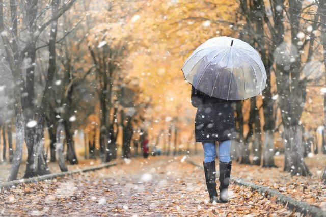 A woman walking through a park with an umbrella