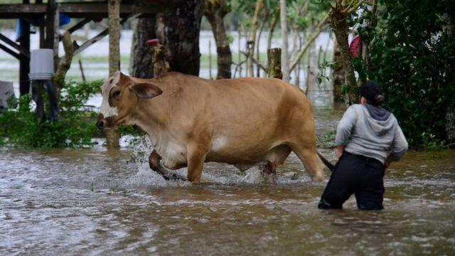 Inundaciones en Honduras por Eta