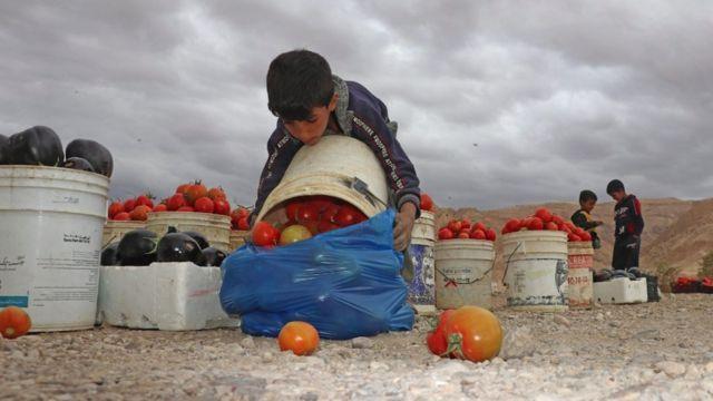Ürdün'de çocuk işçi