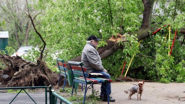 Человек с собакой во дворе