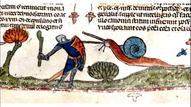 Un caracol atacando a un caballero