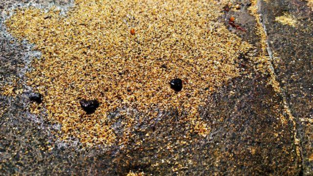 imagem mostra fragmentos de óleo na praia