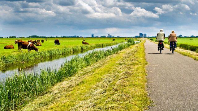 Примерно треть Нидерландов лежит ниже уровня моря