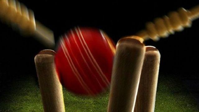 क्रिकेट स्टंप