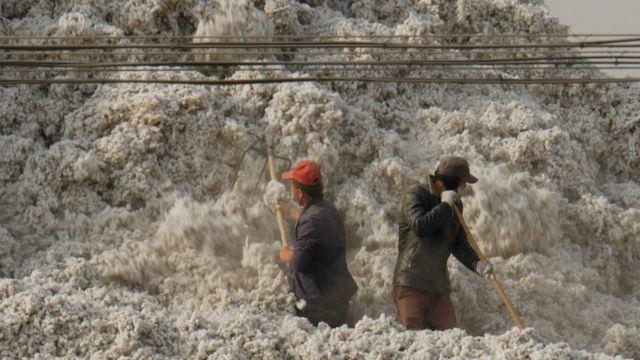 Cotton workers in Xinjiang