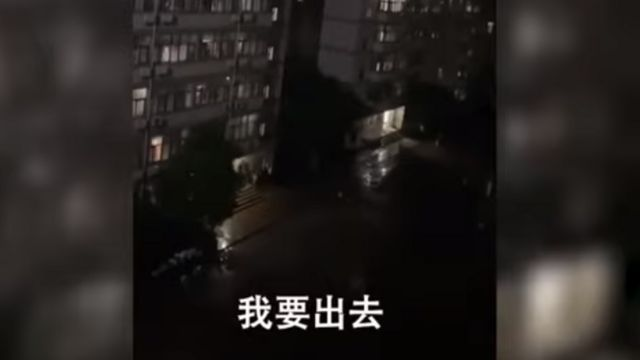 Protest against the lockdown on a Chinese campus.