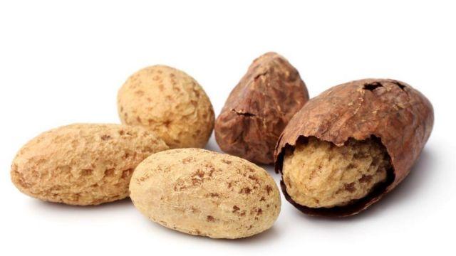 Kacang Kola