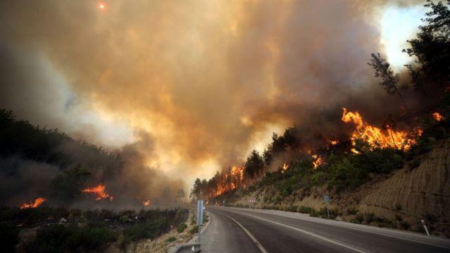 Анталия. Борьба с огнем ведется и с воздуха, и на земле