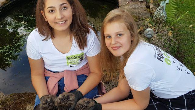 RSPCA recognises hedgehog rescuers who took on developer