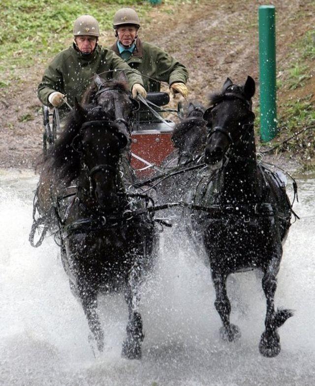 එඩින්බරා ආදිපාදවරයා (වමේ) අශ්ව කරත්ත පැදීමේ ක්රීඩාවක නිරත වෙමින් The Duke of Edinburgh (left) takes part in the Pony-Four-in-Hand / Copyright: PA