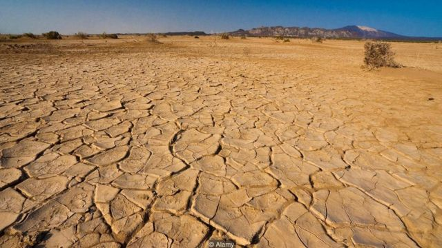 Danakil is full of deposits of mineral salts forced to the surface (Credit: Alamy)