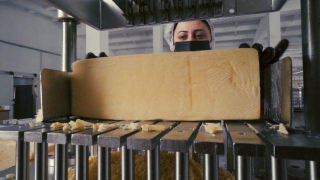 Сырный завод в Варденисе