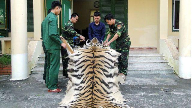 Việt Nam, Malaysia