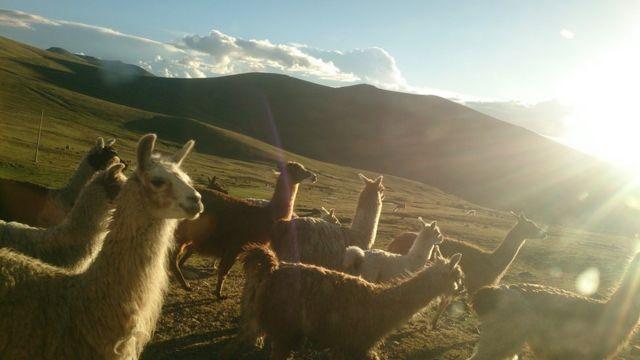 """Foto de un lector de BBC Mundo sobre el tema """"otras formas de viajar"""""""