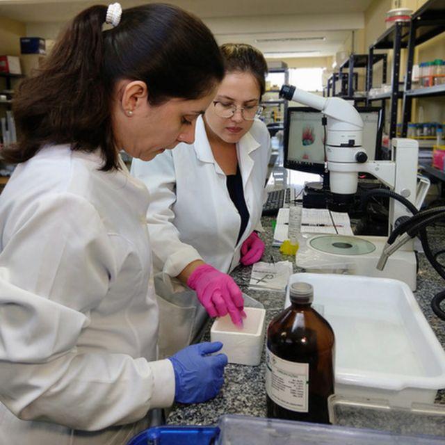 Cientistas testando fórmulas no laboratório
