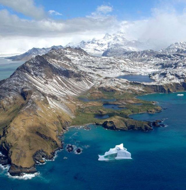 Muitos icebergs acabam indo parar na costa da ilha de Georgia do Sul