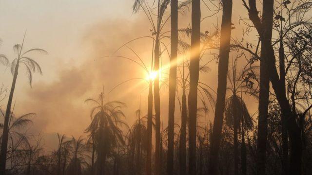 Fumaça escura encobre o sol na Serra do Amolar