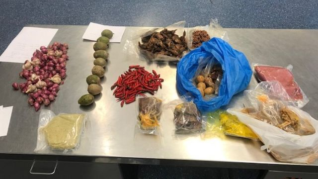 A selection of foods seized in Sydney