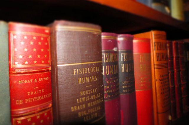 """""""Fisiología humana"""" en la biblioteca del Ibyme"""