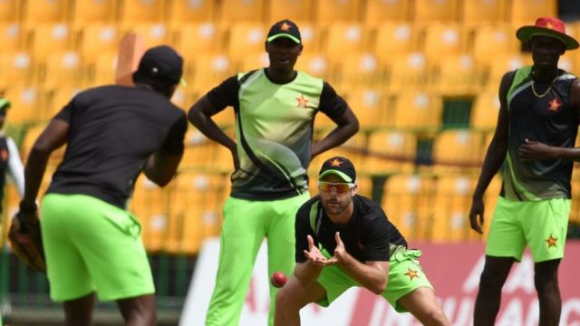 क्रिकेट, खेळ, गुलाबी चेंडू, दिवसरात्र कसोटी, दक्षिण आफ्रिका, झिम्बाब्वे