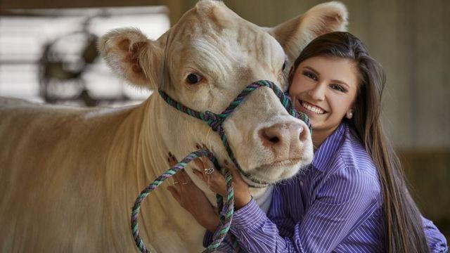 Корова і дівчина