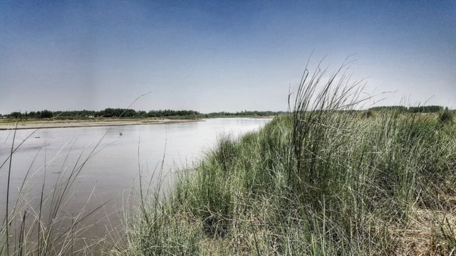 Доктор Вагнер считает, что останки Алама Бега следует захоронить на островке на границе Индии и Пакистана