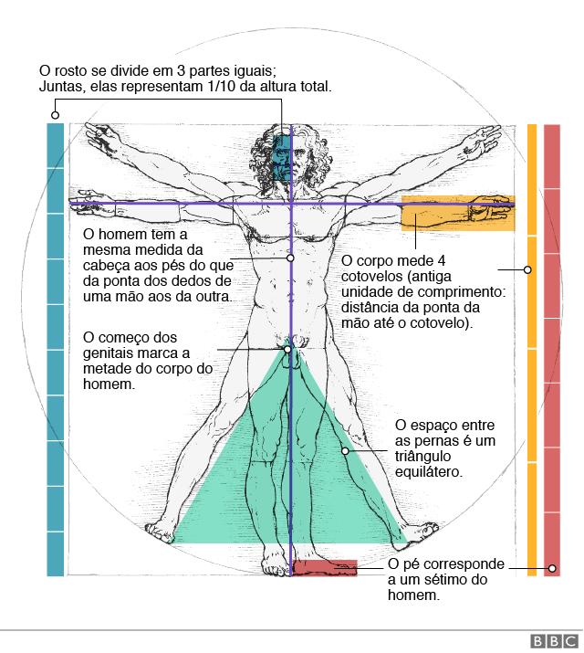 Gráfico sobre o Homem de Vitrúvio