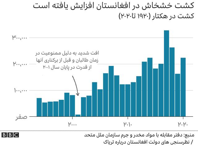 کشت خشخاش در افغانستان
