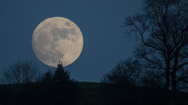Luna Llena de Lobo.