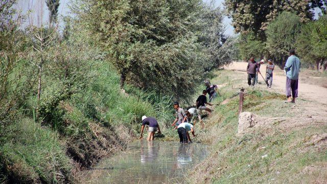 مدیریت انجمنهای مصرف کنندگان آب عمدتا با مردهاست
