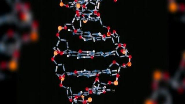 نموذج الحمض النووي