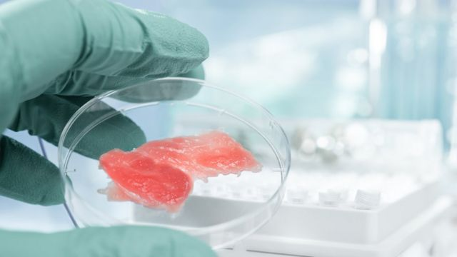 Cultured lab meat may make climate change worse